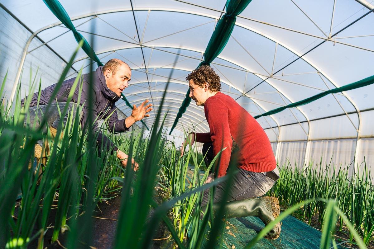 Agriculture transmission Région Pays de la Loire