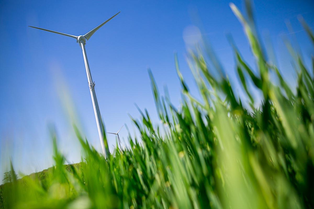 éolienne nature environnement